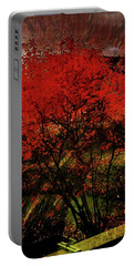 Fiery Dance Portable Battery Charger