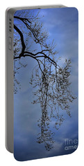 Portable Battery Charger featuring the photograph Filigree From On High by Skip Willits