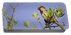 Finch Portable Battery Charger