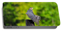 Portable Battery Charger featuring the photograph Fine Feathers by Al Powell Photography USA
