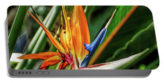 Portable Battery Charger featuring the photograph Fine Wine Cafe Bird Of Paradise by Aimee L Maher Photography and Art Visit ALMGallerydotcom