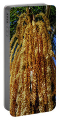 Portable Battery Charger featuring the photograph Fine Wine Cafe Cascading Seed Pod by Aimee L Maher Photography and Art Visit ALMGallerydotcom