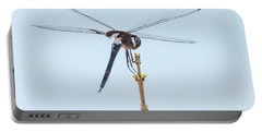 Finnon Dragonfly Portable Battery Charger