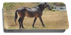 Finnon Lake Horse Portable Battery Charger