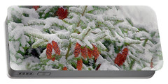 Portable Battery Charger featuring the photograph Fir Cones On White Photo Art by Sharon Talson