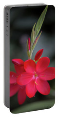 Fire Lily 2 Portable Battery Charger