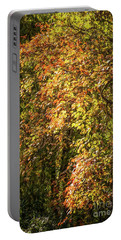 Fires Of Autumn Portable Battery Charger