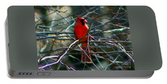 Portable Battery Charger featuring the photograph First Day Of Summer by Barbara S Nickerson