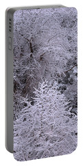 First Snow I Portable Battery Charger