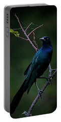 Male Boat-tailed Grackle Portable Battery Charger by Cyndy Doty