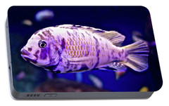 Portable Battery Charger featuring the photograph Calico Goldfish by Joan Reese