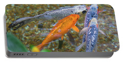 Fish Fighting For Food Portable Battery Charger