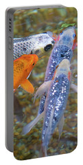 Portable Battery Charger featuring the photograph Fish Fighting For Food by Raphael Lopez