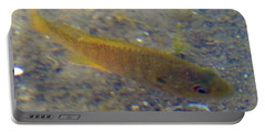 Fish Sandy Bottom Portable Battery Charger