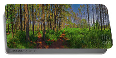Paths, Pines 360 Portable Battery Charger
