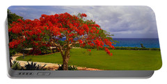 Flamboyant Tree In Grand Cayman Portable Battery Charger by Marie Hicks