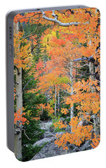 Portable Battery Charger featuring the photograph Flaming Forest by David Chandler