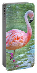 Flamingo 39 Portable Battery Charger