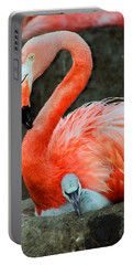 Flamingo And Baby Portable Battery Charger by Anthony Jones