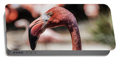 Flamingo Portrait Portable Battery Charger by Daniel Hebard