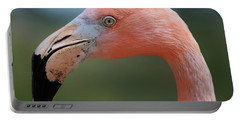 Flamingo Protrait Portable Battery Charger by Marty Fancy