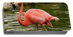 Portable Battery Charger featuring the photograph Flamingo Wades by Nicole Lloyd