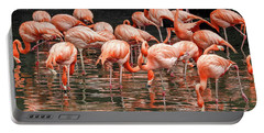 Flamingo Looking For Food Portable Battery Charger