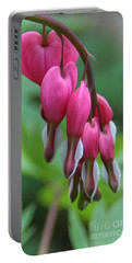 Flawless Cluster Of Hearts Portable Battery Charger by Barbara S Nickerson