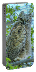 Fledgling Moment At Sundown Portable Battery Charger