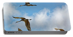 Flight Of The Cranes Portable Battery Charger