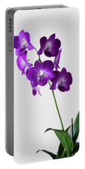 Portable Battery Charger featuring the photograph Floral by Tom Prendergast