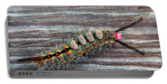 Florida Caterpillar Portable Battery Charger by Hanny Heim