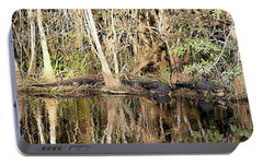 Portable Battery Charger featuring the photograph Florida Gators - Everglades Swamp by Jerry Battle
