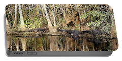 Florida Gators - Everglades Swamp Portable Battery Charger