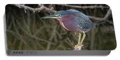 Florida Green Heron Portable Battery Charger