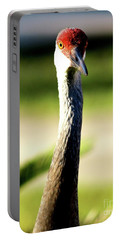 Florida Sandhill Crane Portable Battery Charger