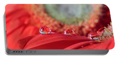 Flower Reflections Portable Battery Charger by Angela Murdock