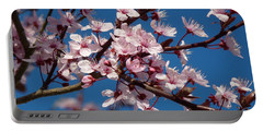 Flowering Of The Plum Tree 5 Portable Battery Charger