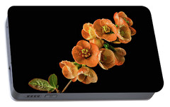 Portable Battery Charger featuring the photograph Flowering Quince Orange by Mary Jo Allen