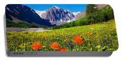 Flowering Valley. Mountain Karatash Portable Battery Charger