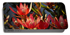 Portable Battery Charger featuring the photograph Flowers At Sunset by AJ Schibig