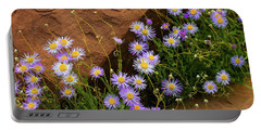 Flowers In The Rocks Portable Battery Charger by Darren White