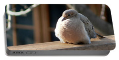Portable Battery Charger featuring the photograph Fluffy by Laurel Best