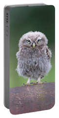 Fluffy Little Owl Owlet Portable Battery Charger