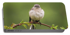 Fluffy Mockingbird Portable Battery Charger by Terry DeLuco