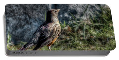 Portable Battery Charger featuring the photograph Fly Robin Fly by Pennie  McCracken