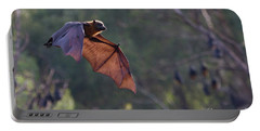 Flying Fox In Mid Air Portable Battery Charger by Craig Dingle