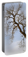 Flying Goose By Great Tree Portable Battery Charger