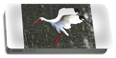 Flying Ibis Over Gray Pond Portable Battery Charger