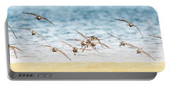 Flying Shore Birds Pano Portable Battery Charger